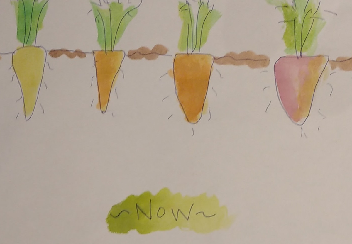 A Simple Story About Carrots and the Power of Saving Money
